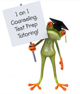 Frog advertising 1on1 services